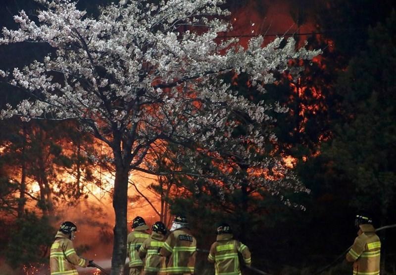 کم سابقه ترین آتش سوزی در تاریخ کره جنوبی