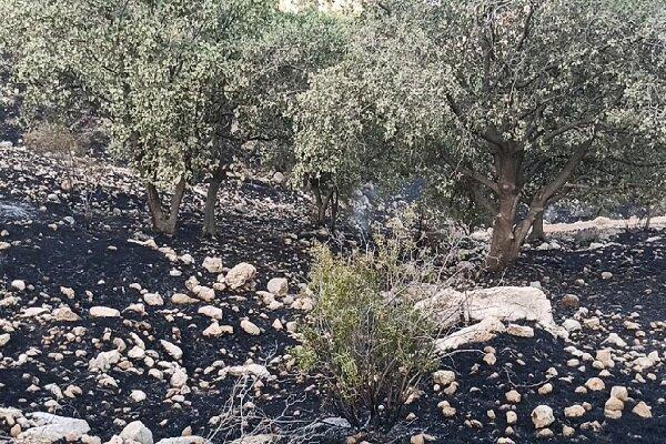 مهار دوباره آتش در خائیز کهگیلویه