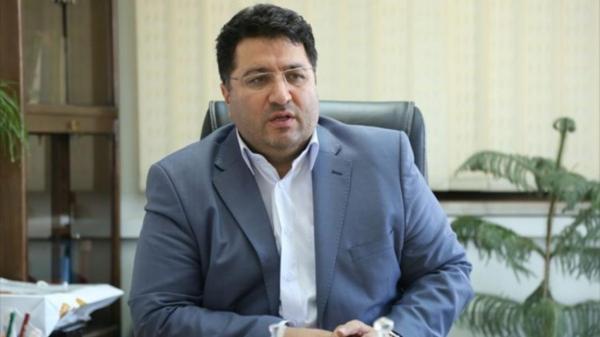 رئیس سازمان حمایت علت اصلی افزایش قیمت مرغ را توضیح داد