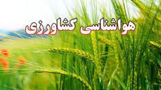 توصیه های هواشناسی کشاورزی آذربایجان شرقی برای روزهای بارانی پیش رو